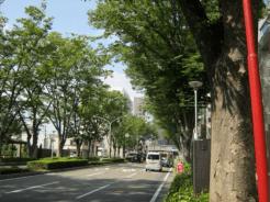 maebashimatsuri