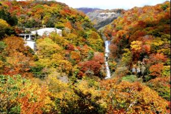 nikkou-kouyou