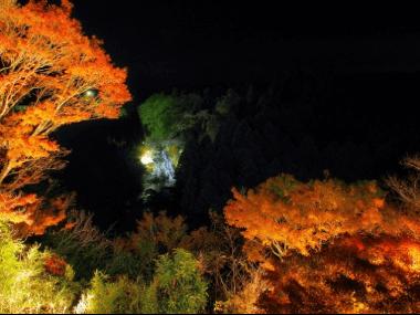 youroukeikou-kouyou