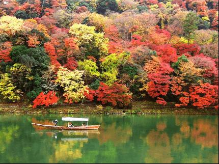 arashiyama-kouyou