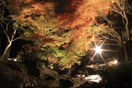 nagatoro-kouyou