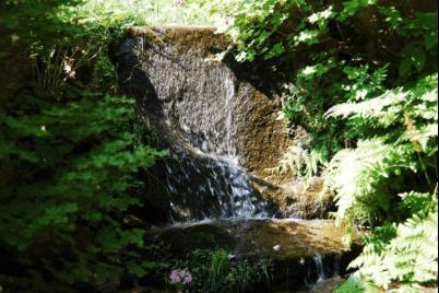 rokkousann-kouyou