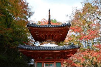 oosaka-kouyou