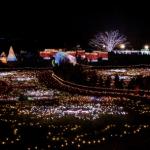 昭和記念公園イルミネーション2016の日程とアクセス情報は?花火や屋台も楽しめる!