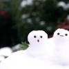 1月の北海道旅行でおススメは?気温は、どのような服装で行ったらいいの?