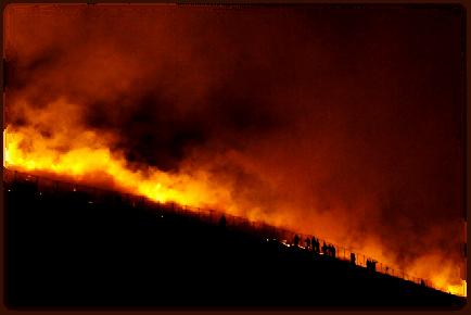 奈良の山焼き