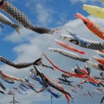 館林鯉のぼりの里まつり2017日程や見どころは?